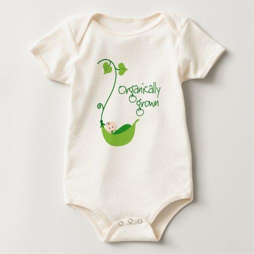 Bebé vegetariano orgánico enterito
