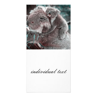 bebé y momia de la koala tarjetas fotográficas