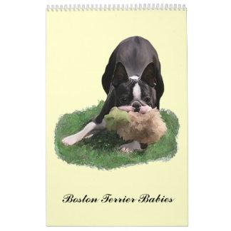 Bebés de Boston Terrier Calendario De Pared