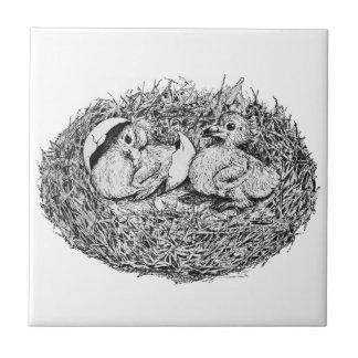 Bebés de la jerarquía de la paloma tejas  cerámicas