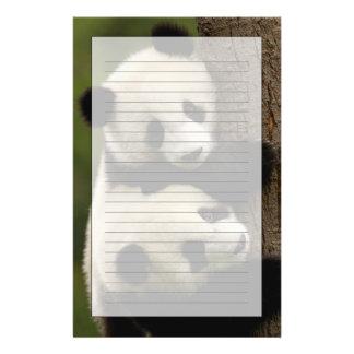 Bebés de la panda gigante (melanoleuca del Ailurop Papelería