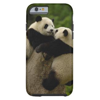 Bebés de la panda gigante (melanoleuca del funda de iPhone 6 tough