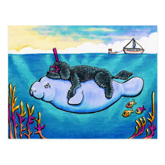 Bebés del agua tarjetas postales