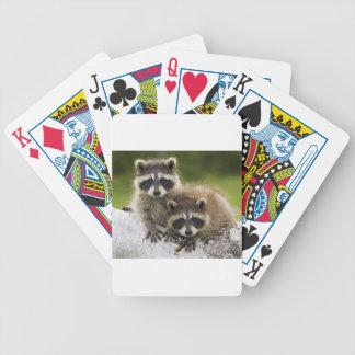 Bebés del mapache cartas de juego