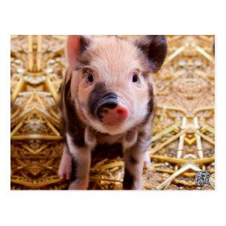 Bebés lindos de los animales del campo del tarjeta postal