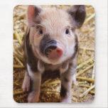 Bebés lindos del corral de los animales del campo  alfombrilla de ratones