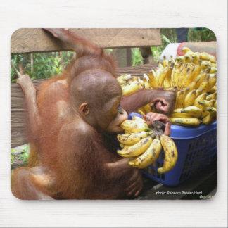 Bebés y plátanos en Borneo Tapetes De Raton