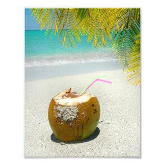 Bebida del coco en la playa tropical con las hojas impresiones fotograficas
