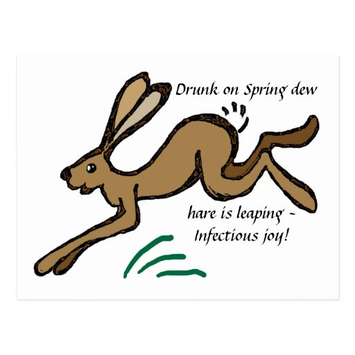 Bebido en el rocío de la primavera, la liebre está postal