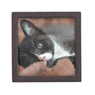 Bebop Keepsake Box