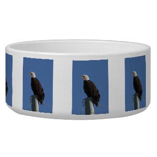 BEBS Bald Eagle Blue Sky Bowl