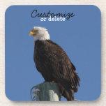 BEBS Bald Eagle Blue Sky Coaster