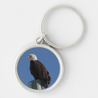 BEBS Bald Eagle Blue Sky Keychain