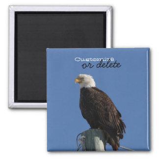 BEBS Bald Eagle Blue Sky Magnet