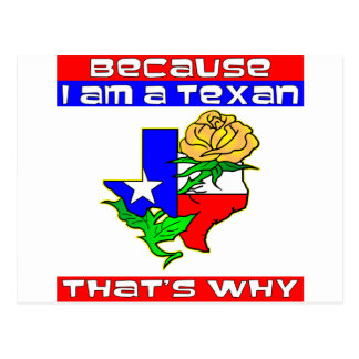 Because I'm A Texan That's Why Yellow Rose Postcard
