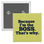 Because I'm the boss, that's why. Pins