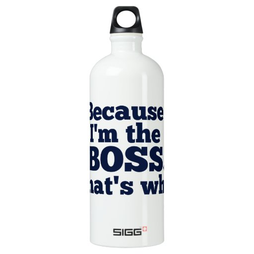 Because I'm the boss, that's why. SIGG Traveler 1.0L Water Bottle