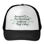 Because I'm the Electrical Engineer Mesh Hat
