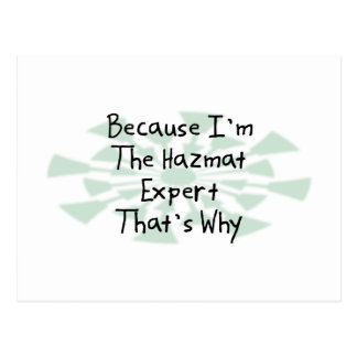 Because I'm the Hazmat Expert Postcard