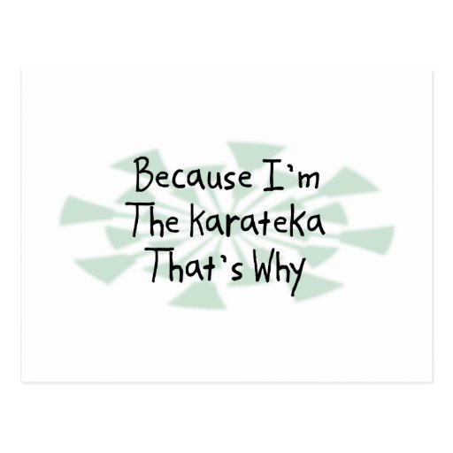Because I'm the Karateka Postcard