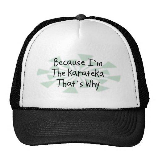 Because I'm the Karateka Trucker Hat