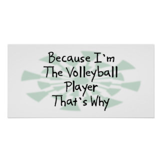 Because I'm the Volleyball Player Poster