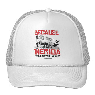Because 'Merica - That's why Trucker Hat