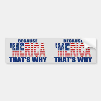 BECAUSE 'MERICA THAT'S WHY 2-in-1 Bumper Sticker