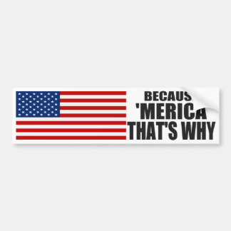 BECAUSE 'MERICA THAT'S WHY Bumper Sticker