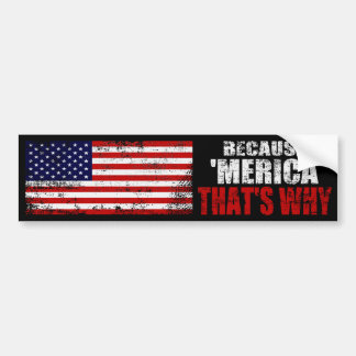 BECAUSE MERICA THATS WHY Distressed Bumper Sticker