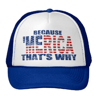 BECAUSE 'MERICA THAT'S WHY Distressed Trucker Hat