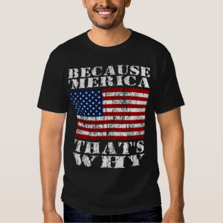 Because 'MERICA Thats Why Distressed US Flag Shirt