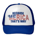 BECAUSE 'MERICA THAT'S WHY Trucker Hat (blue)