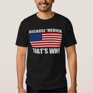 BECAUSE 'MERICA THAT'S WHY U.S. Flag T-Shirt