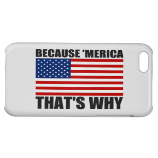BECAUSE 'MERICA THAT'S WHY US Flag iPhone Case