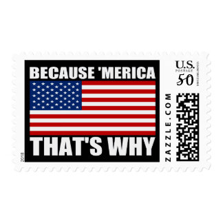 BECAUSE 'MERICA THAT'S WHY US Flag Postage Stamps