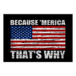 BECAUSE 'MERICA THAT'S WHY US Flag Poster (large)