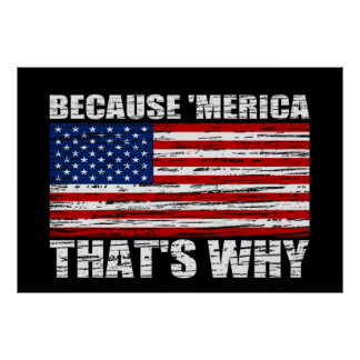 because_merica_thats_why_us_flag_poster_
