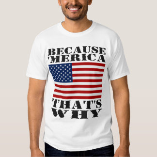 Because 'MERICA That's Why US Flag T-shirt