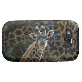 Becerro de la jirafa con las jirafas galaxy s3 fundas