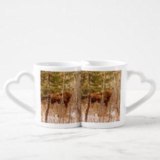 Becerro de los alces set de tazas de café