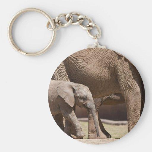 Becerro del elefante llavero