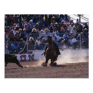 Becerro Roping del vaquero en el rodeo Postal