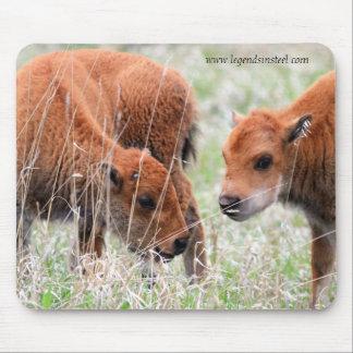 Becerros del bisonte tapete de raton