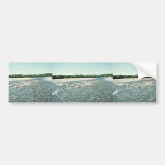 Becharof Creek with Spawning Salmon Bumper Sticker