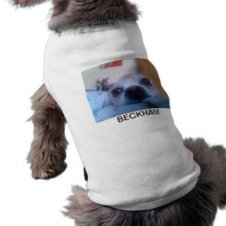 Beckham T-Shirt