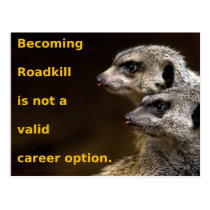 Becoming Roadkill Is Not A Valid Career Option Postcard