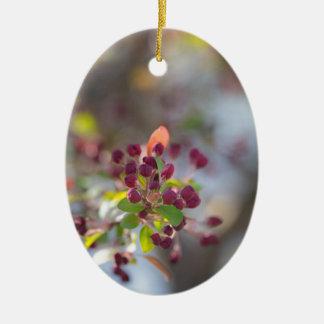 Becoming Spring Ceramic Ornament