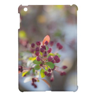 Becoming Spring iPad Mini Case