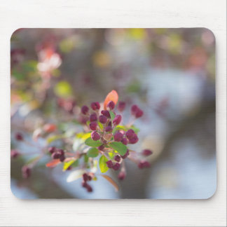 Becoming Spring Mouse Pad